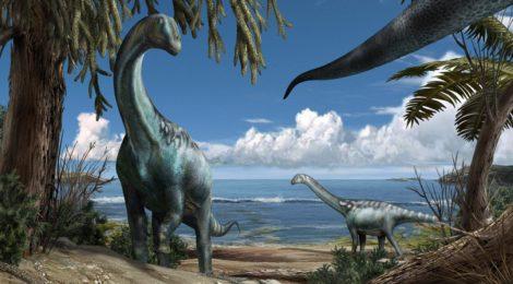 ROSEA =  L'Era Dei Dinosauri I Giganti Della Preistoria - Documentario Completo   = ROSALBA SELLA